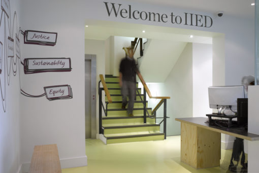 IIED Offices