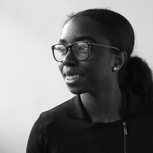 Seyi Adewole Architectural Assistant